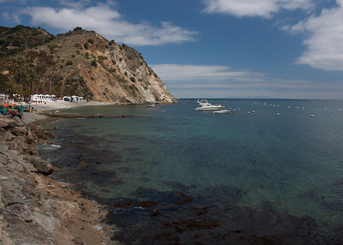 The Catalina Flying Fish Festival! (Part 1)