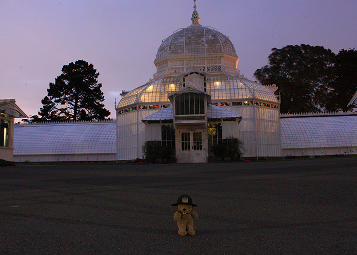 The Conservatory!
