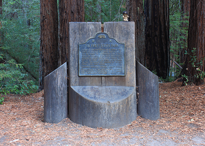 Big Basin Redwoods State Park!