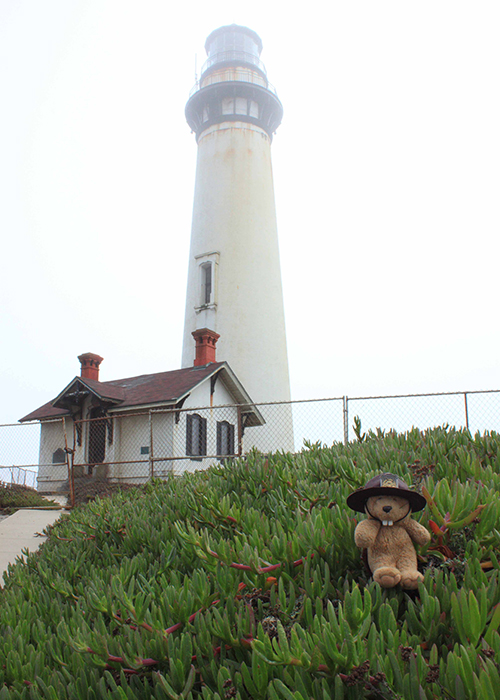 Pigeon Point Lighthouse!