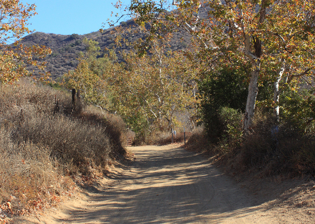 A Haunted Hike up Black Star Canyon!
