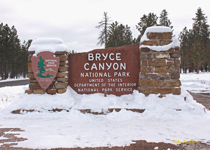 Bryce Canyon National Park!