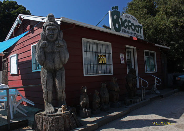 The Bigfoot Discovery Museum!