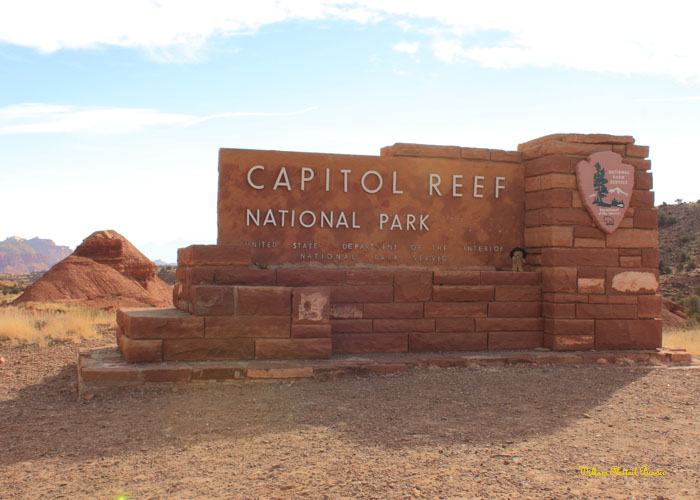 Capitol Reef National Park!