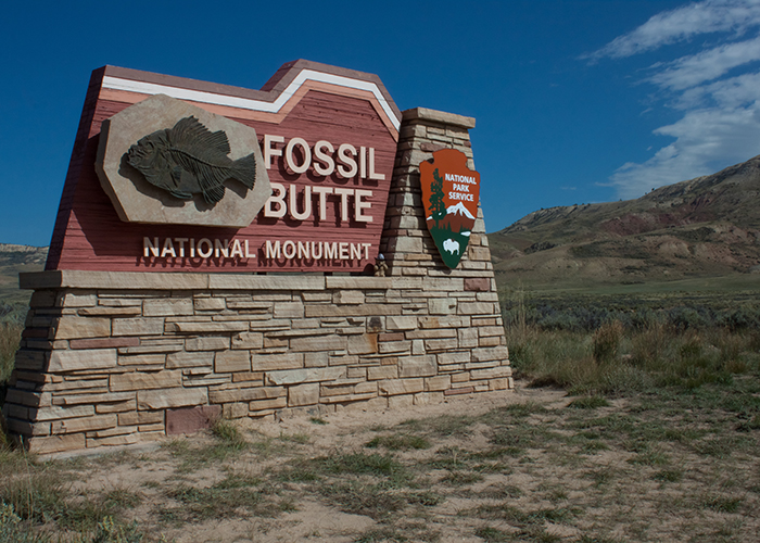 Fossil Butte National Monument!