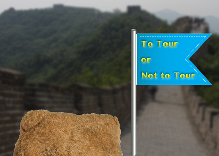 To Tour or Not to Tour? A Very Good Question!