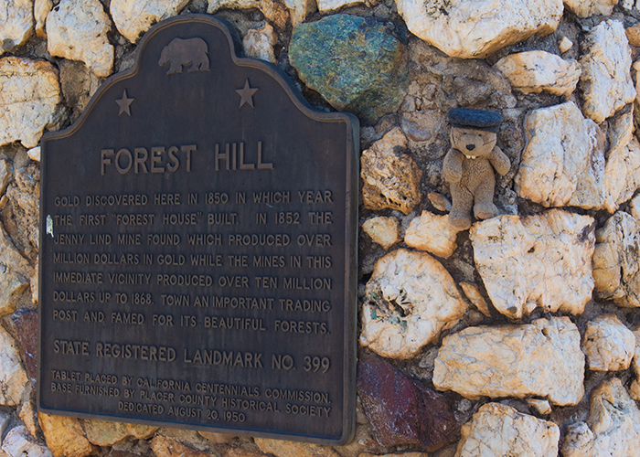 Town of Forest Hill!