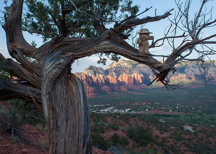The Mysterious Vortices of Sedona!