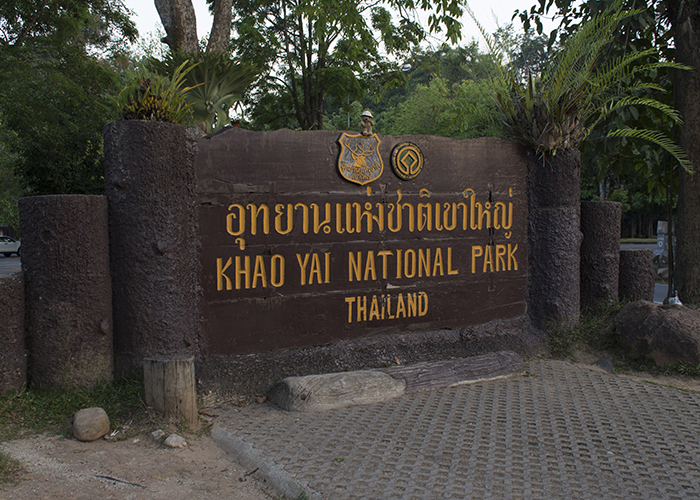 Khao Yai National Park!