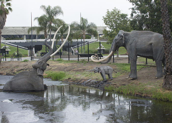 Gloom and Doom at the La Brea Tar Pits!