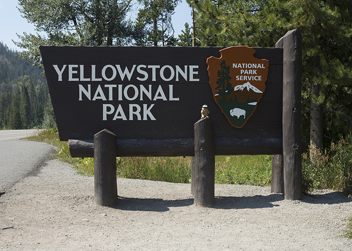 Yellowstone National Park!