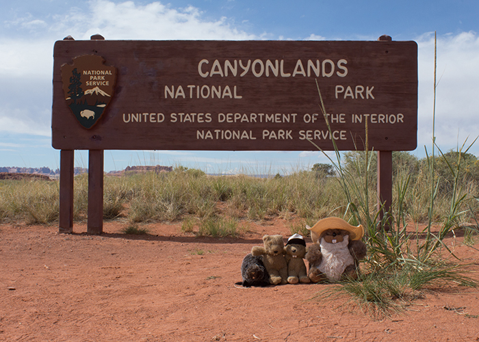 Canyonlands National Park!