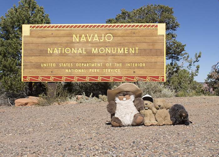 Navajo National Monument!