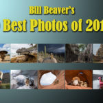 Bill's 10 Best Photos of 2017!