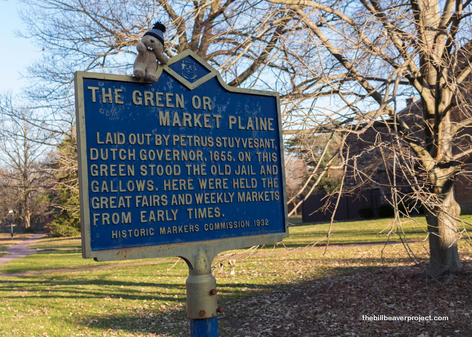 The Green or Market Plaine